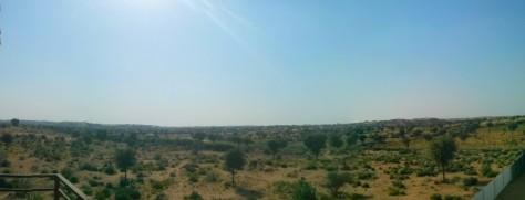 Kakku - Badhla area near Bikaner